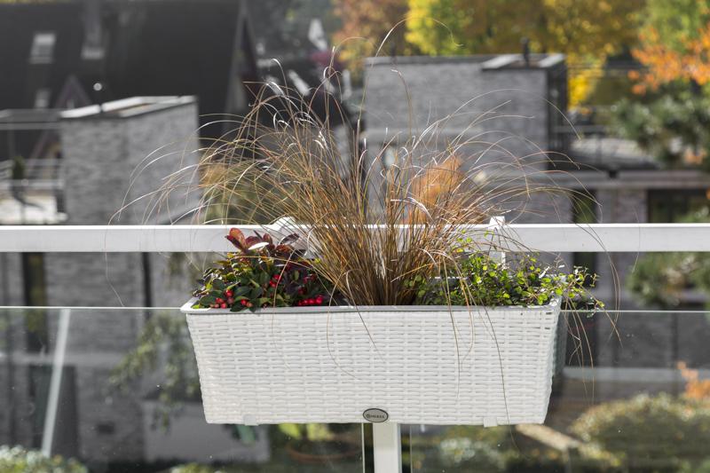 Blumenkasten 60x19x15cm, Polyrattan weiss